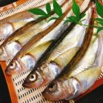 底曳き漁で獲れる魚をご紹介!第2回 ハタハタ